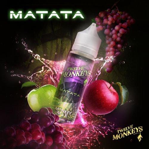 Twelve Monkeys Matata