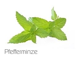 Zazo Peppermint 10ml