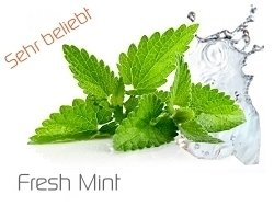 Zazo Fresh Mint 10ml